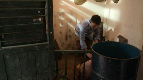 MC Quang Minh xắn quần tắm cho heo giữa chung cư - hình ảnh 3
