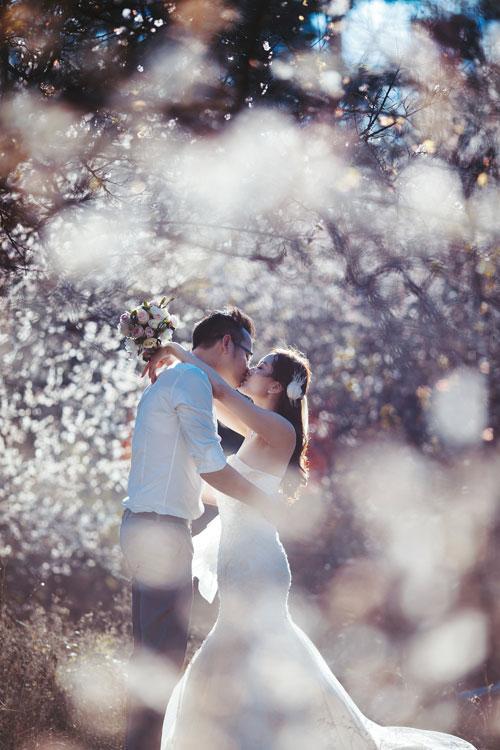 Cặp đôi Hà thành lãng mạn giữa rừng hoa mận trắng muốt - hình ảnh 13