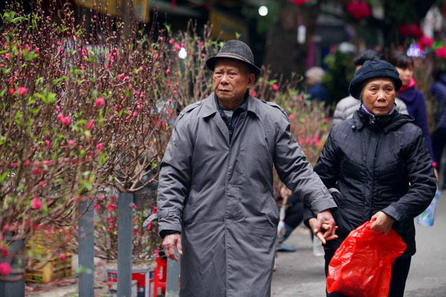 Ảnh: Sắc màu chợ hoa xuân phố cổ ngày cận Tết - hình ảnh 1