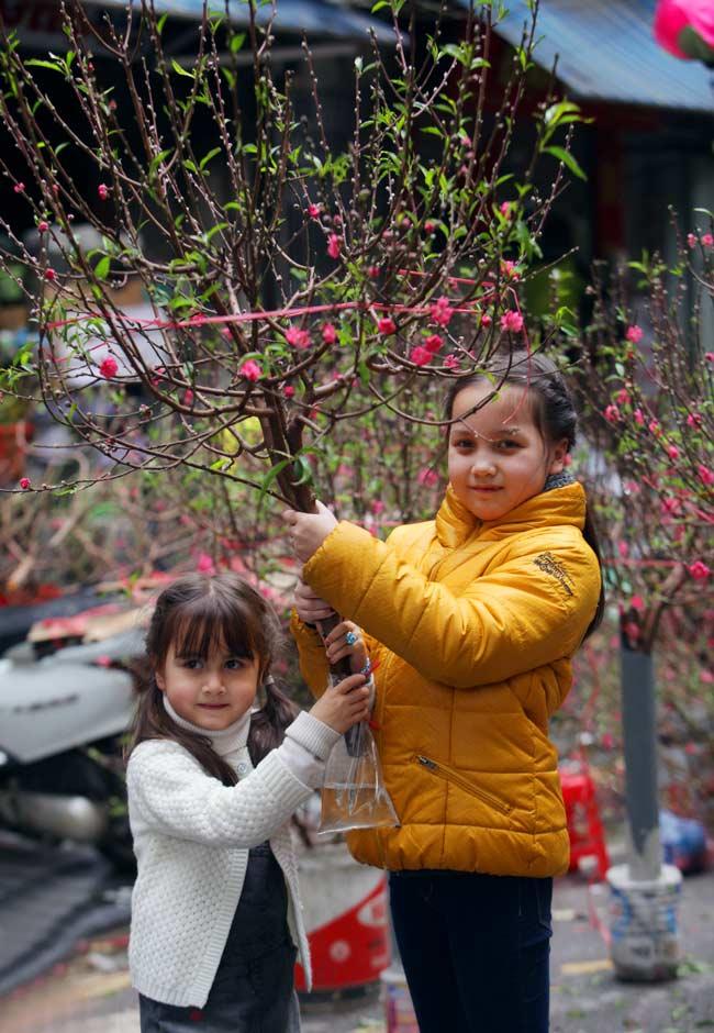 Ảnh: Sắc màu chợ hoa xuân phố cổ ngày cận Tết - hình ảnh 8