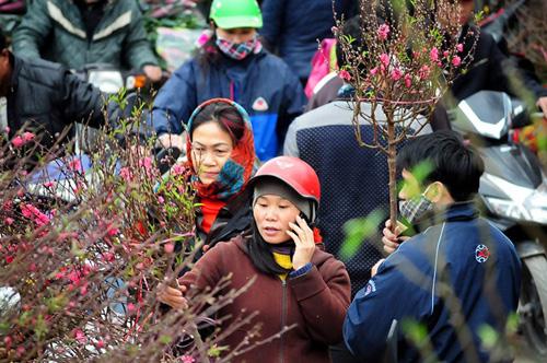 """Hà Nội: Sắc đào """"nhuộm"""" đỏ chợ hoa Quảng Bá - hình ảnh 7"""