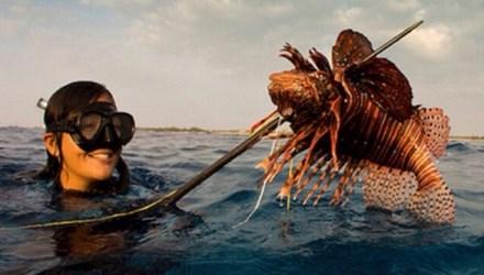 Nữ ngư dân quyến rũ giết bạch tuộc bằng răng - hình ảnh 1