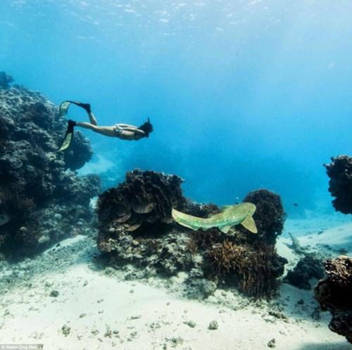 Nữ ngư dân quyến rũ giết bạch tuộc bằng răng - hình ảnh 11