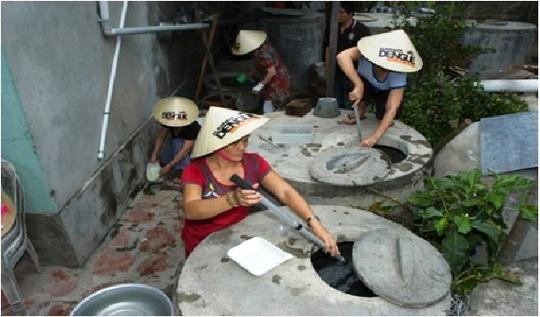 Muỗi vằn nuôi ở Nha Trang áp chế được Zika? - hình ảnh 1