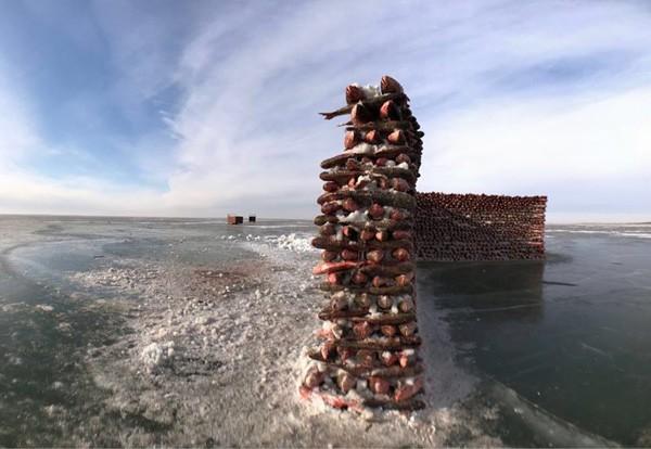 Du khách đổ sô chiêm ngưỡng bức tường cá lạ lùng giữa hồ băng - hình ảnh 4