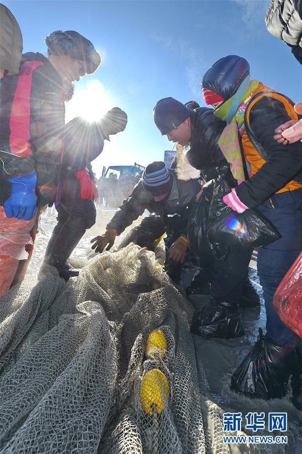 Du khách đổ sô chiêm ngưỡng bức tường cá lạ lùng giữa hồ băng - hình ảnh 8