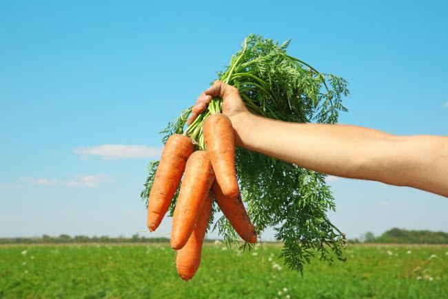 10 thực phẩm hằng ngày giúp cơ thể giải độc tự nhiên - hình ảnh 2