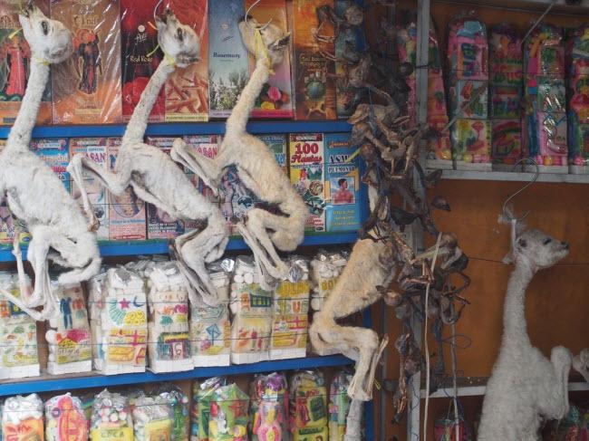 Lạnh người lạc vào khu chợ của phù thủy - hình ảnh 7