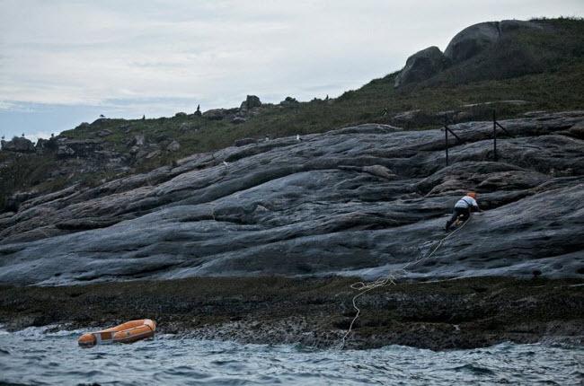 Tim đập chân run khám phá hòn đảo toàn rắn độc - hình ảnh 3