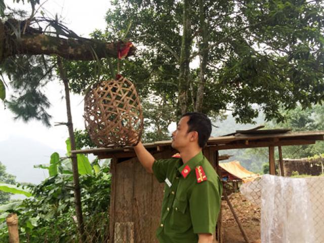 Kinh thiên những vụ thảm án đồng rừng và chiếc lồng gà đón sóng