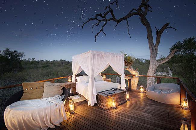 Những khách sạn trên cây khiến du khách mê mẩn vì quá tuyệt vời - hình ảnh 5