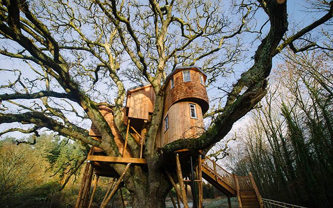 Những khách sạn trên cây khiến du khách mê mẩn vì quá tuyệt vời - hình ảnh 9