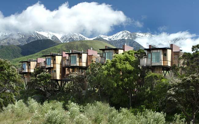 Những khách sạn trên cây khiến du khách mê mẩn vì quá tuyệt vời - hình ảnh 14