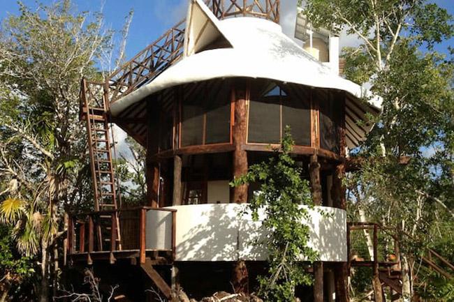 Những khách sạn trên cây khiến du khách mê mẩn vì quá tuyệt vời - hình ảnh 19