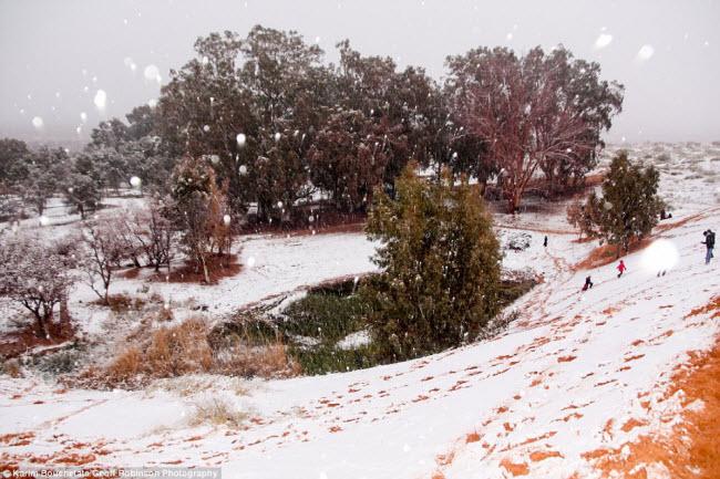 Du khách đổ xô tới sa mạc Sahara ngắm tuyết rơi - hình ảnh 2