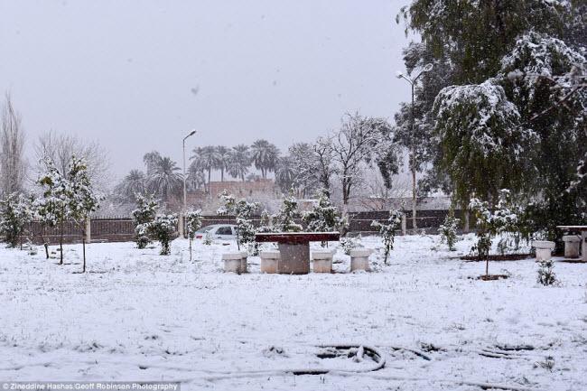 Du khách đổ xô tới sa mạc Sahara ngắm tuyết rơi - hình ảnh 5
