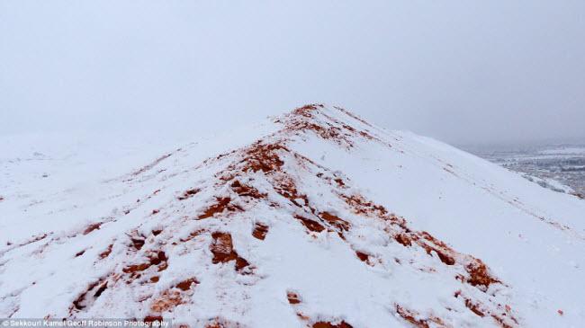 Du khách đổ xô tới sa mạc Sahara ngắm tuyết rơi - hình ảnh 1