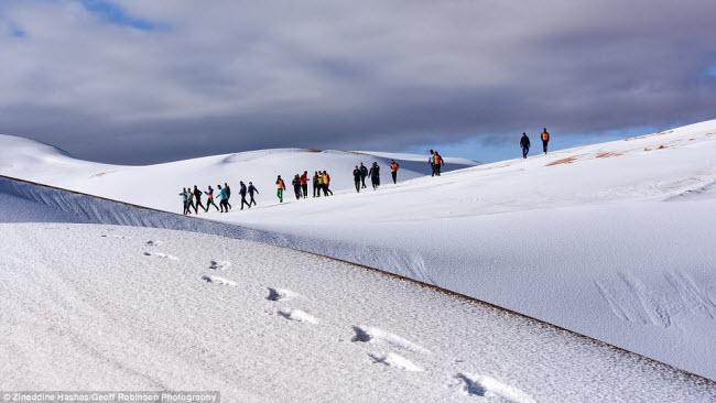 Du khách đổ xô tới sa mạc Sahara ngắm tuyết rơi - hình ảnh 4