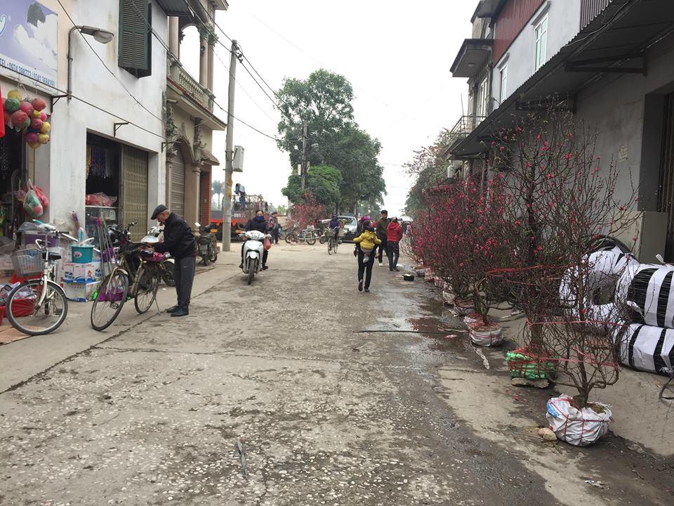 Dân làng Quan Độ phủ bạt lên nóc nhà đón Tết sau vụ nổ rung chuyển Bắc Ninh - hình ảnh 1