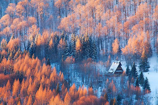 Du khách sẽ bị sốc khi đứng trên một ngọn đồi và nhìn thấy một cảnh quan thực sự tuyệt vời này. Những con đường mòn nằm núp dướirừng cây thông lá đỏ, tuyết trắng bao phủ khắp mọi nơi làm nổi bật màu sắc rực rỡ của lá thông và những ngôi nhà nhỏ nhắn ẩn mình dưới tán lá.