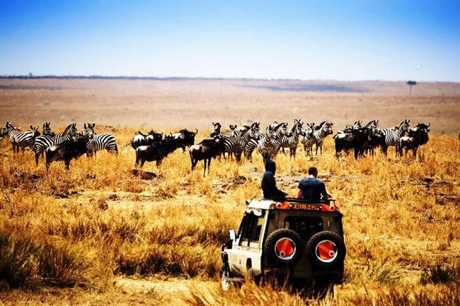 Đi nghỉ trăng mật ở Châu Phi, tại sao không? - hình ảnh 4