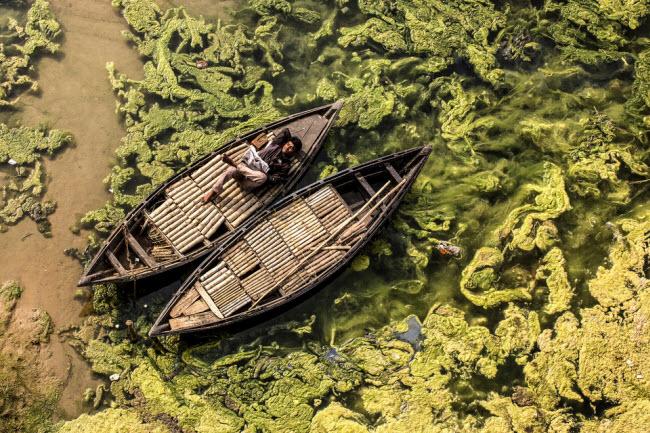 Ảnh Việt Nam lọt top những bức hình tuyệt nhất nhờ khoảnh khắc đẹp xuất thần - hình ảnh 6