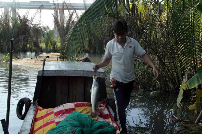 """Theo chân thợ săn cá """"khủng"""", từng 2 lần được lộc trời ban ở Sài Gòn - hình ảnh 17"""