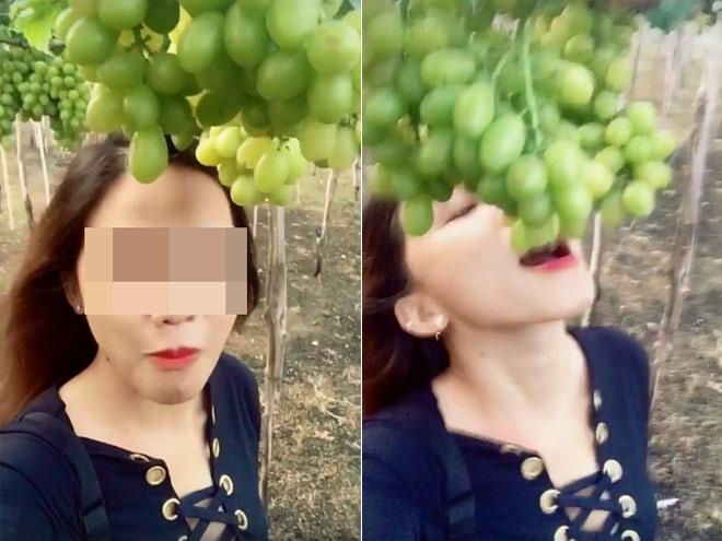 """Hai nữ phượt thủ bị """"ném đá"""" vì tùy tiện ăn nho trên giàn tại Ninh Thuận - hình ảnh 1"""