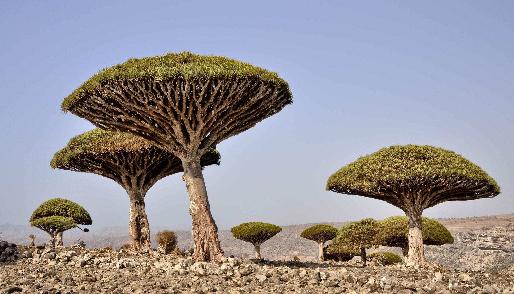 Không phải sản phẩm photoshop, đây là những vùng đất kỳ lạ nhất thế giới - 12