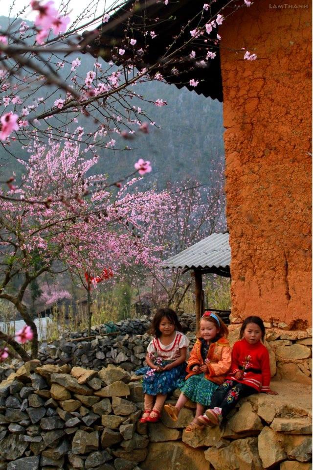Đến Hà Giang mùa xuân, ngẩn ngơ nhìn đá nở hoa - 11
