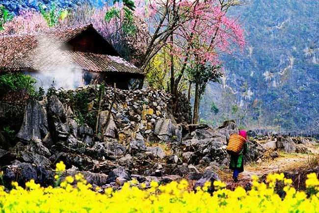 Đến Hà Giang mùa xuân, ngẩn ngơ nhìn đá nở hoa - 12