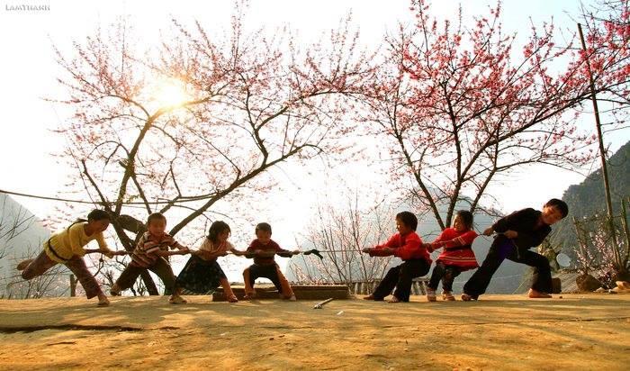 Đến Hà Giang mùa xuân, ngẩn ngơ nhìn đá nở hoa - 14