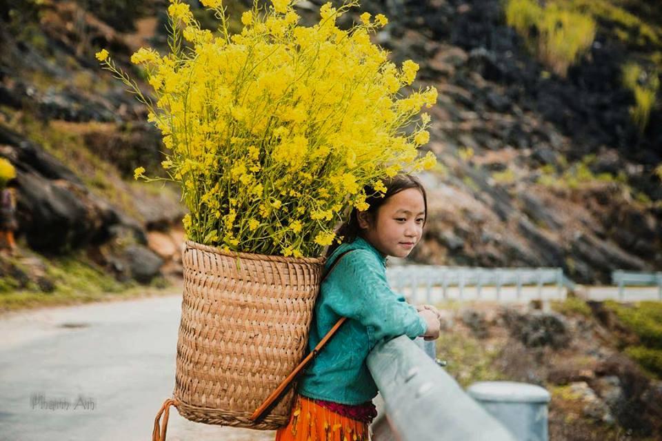 Đến Hà Giang mùa xuân, ngẩn ngơ nhìn đá nở hoa - 4