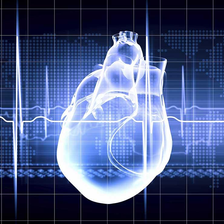 Dựa vào độ tuổi lần đầu có kinh nguyệt để dự báo sức khỏe tương lai? - 1