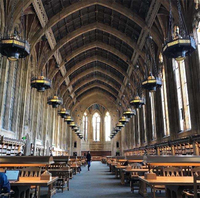 Lạc vào thế giới phù thủy cùng Harry Potter tại những thư viện huyền bí này - 2