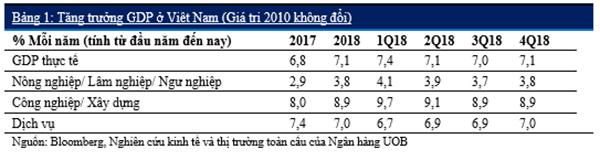 Việt Nam: Hướng tới tăng trưởng mạnh mẽ trong năm 2019 - 5