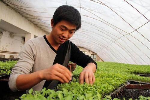 Ba tuyệt chiêu giúp bạn trở thành tỷ phú kể cả phải trồng rau - 2