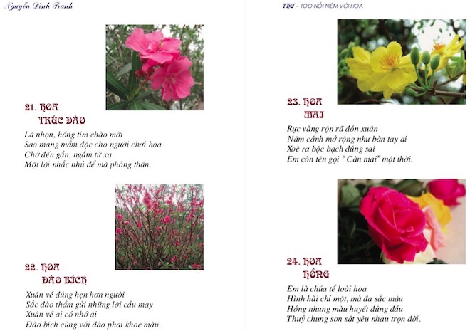 Chào Xuân 2019, gặp kỷ lục gia sáng tác thơ về các loài hoa nhiều nhất VN - 2
