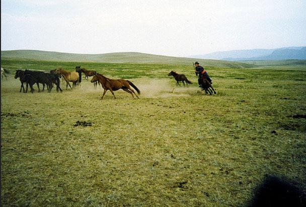 Mông Cổ bí ẩn và đầy huyền bí là điểm đến không thể bỏ qua của mọi du khách ưa khám phá - 6