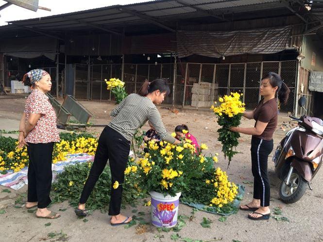 Rau xanh, hoa tươi ở Hà Nội rớt giá thê thảm sau Tết - 2