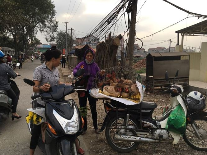 Rau xanh, hoa tươi ở Hà Nội rớt giá thê thảm sau Tết - 3