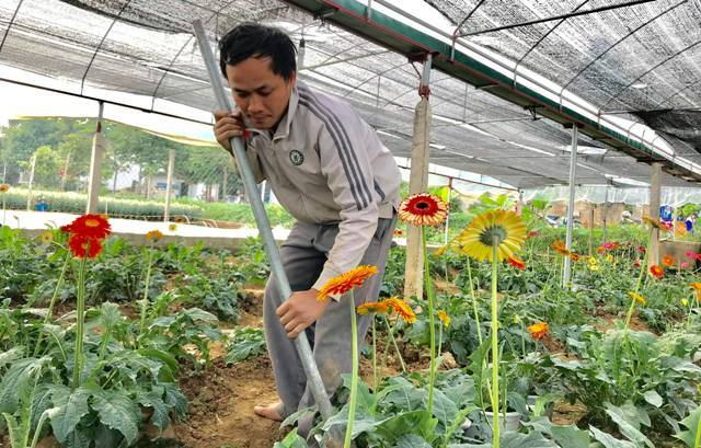 Vườn hoa tiền tỷ của chàng công nhân gác tàu xứ Thanh - 1