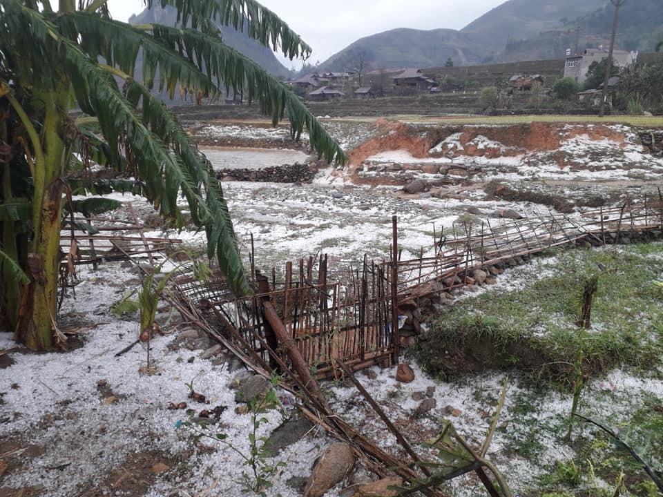 Clip: Trận mưa đá kinh hoàng gần 1h đồng hồ trút xuống Mù Cang Chải - 1