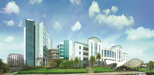 Du học ngành Kinh doanh quốc tế tại Học viện quản lý Singapore - 2