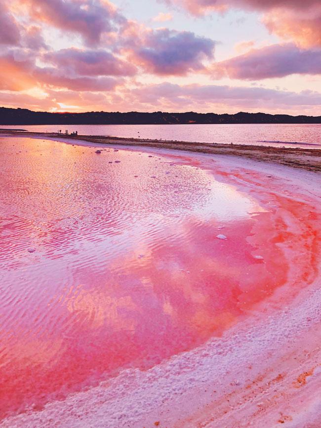 Giật mình phát hiện hồ nước màu hồng duy nhất trên thế giới - 2
