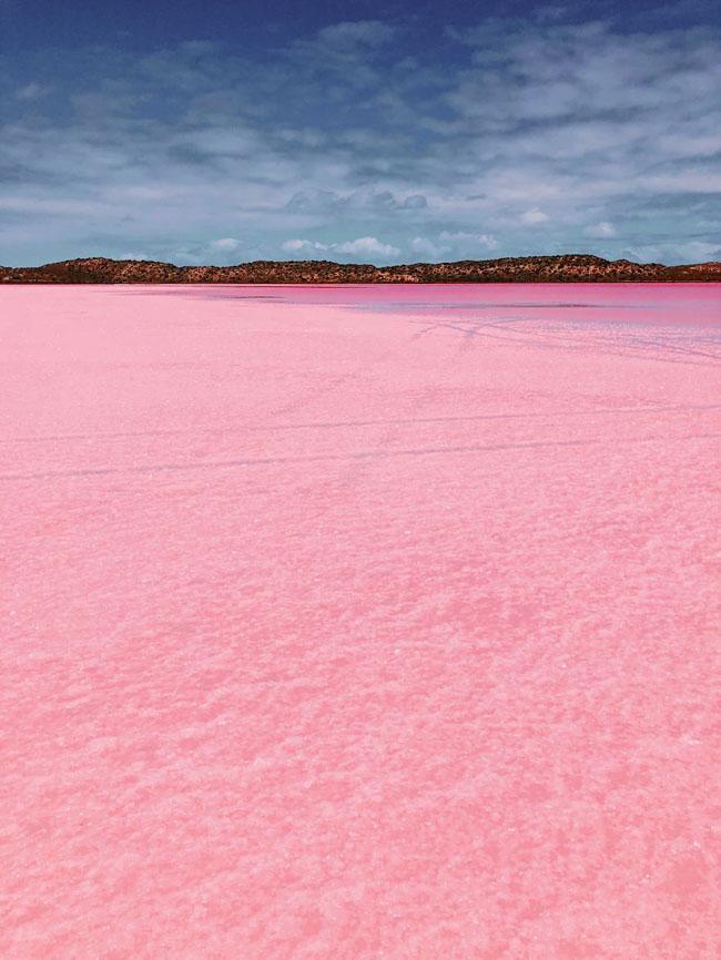 Giật mình phát hiện hồ nước màu hồng duy nhất trên thế giới - 6