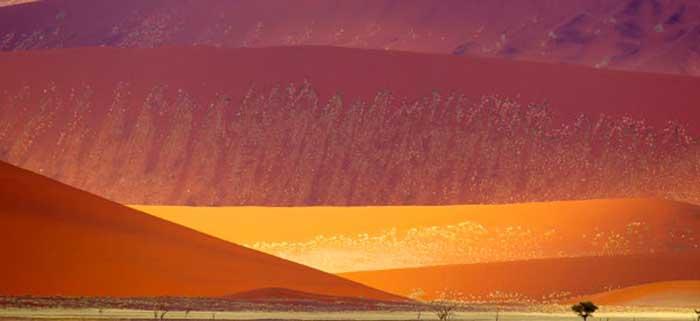 Sa mạc nguy hiểm nhất thế giới, nơi cồn cát đỏ rực mọc trên nền đất trắng như tuyết - 3