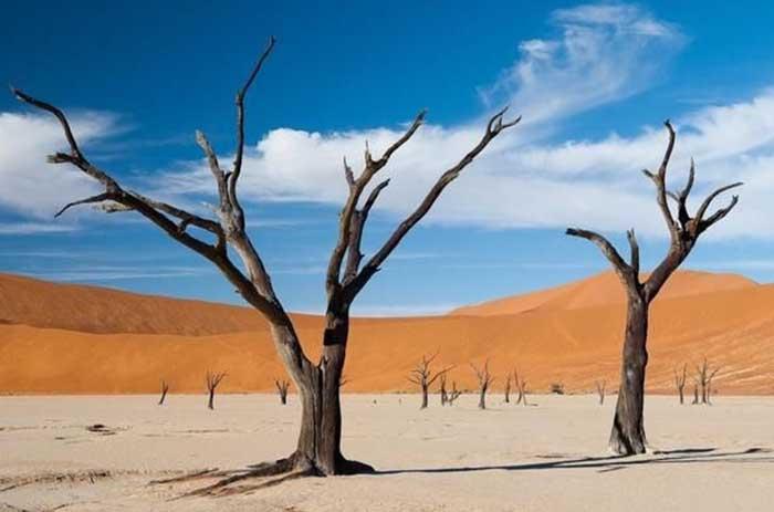 Sa mạc nguy hiểm nhất thế giới, nơi cồn cát đỏ rực mọc trên nền đất trắng như tuyết - 9