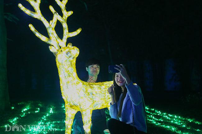 """Hình ảnh """"khu vườn ánh sáng"""" ở Hà Nội hút đông bạn trẻ đến check-in - 10"""