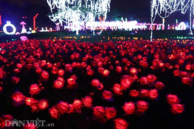"""Hình ảnh """"khu vườn ánh sáng"""" ở Hà Nội hút đông bạn trẻ đến check-in - 3"""